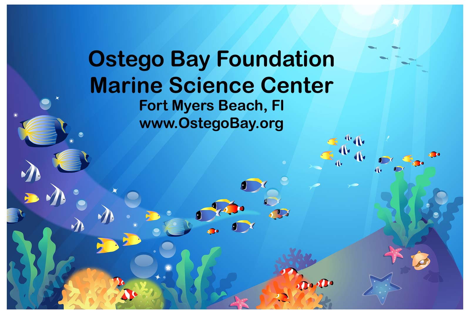 Ostego Bay Marine Science Center Fort Myers Beach